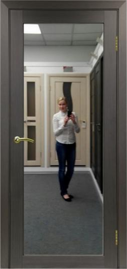 Турин 501.2 зеркало